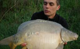 gvk2010-(13)