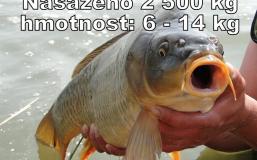 zvk24-4-2013-(22)