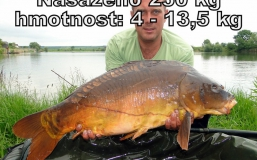 zvk29-5-2013-(39)