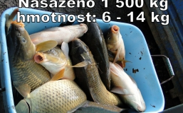 zvk30-3-2013-(21)